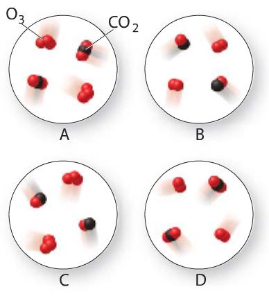 Ozone Gas (O3) Reacts With Carbon Monoxide Gas To ... | Chegg.com